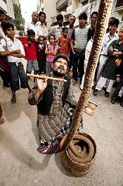 indian-rope-trick.jpg